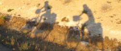 Radfahrer Schatten